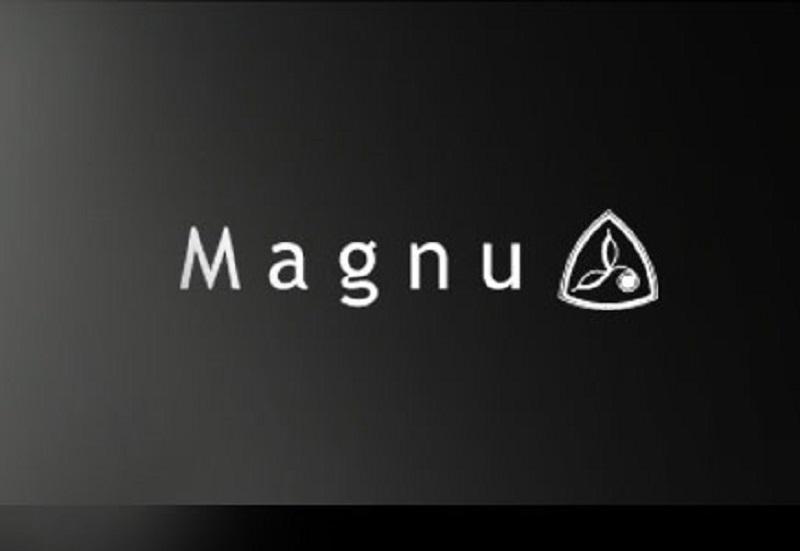 【Magnu】マヌーからX'masギフトに最適なアクセサリーが到着!!